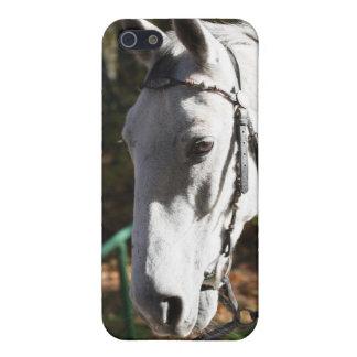 Caso del caballo blanco para el iPhone 4 iPhone 5 Cárcasas