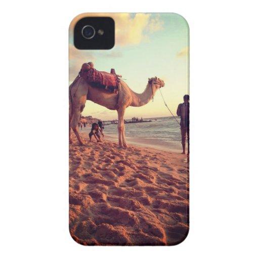 Caso del camello de la playa de Gaza iPhone 4 Carcasa
