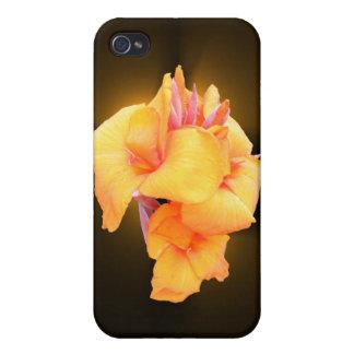 Caso del ~ de la flor de Canna que brilla intensam iPhone 4 Coberturas