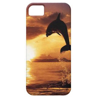 caso del delfín de la puesta del sol funda para iPhone SE/5/5s