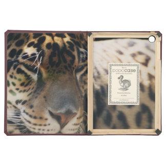 caso del Dodo del aire del iPad del leopardo