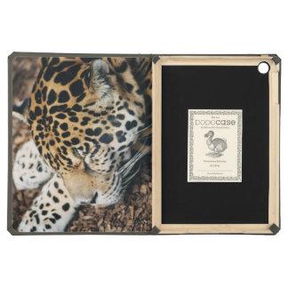 caso del Dodo del aire del iPad el dormir del leop
