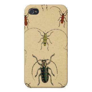 Caso del escarabajo del vintage iPhone 4 fundas