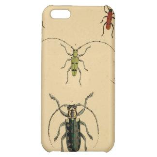 Caso del escarabajo del vintage