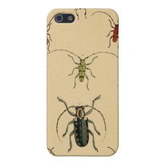 Caso del escarabajo del vintage iPhone 5 carcasa