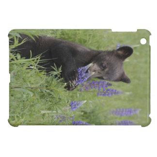 Caso del iPad de Cub de oso negro mini iPad Mini Cárcasa