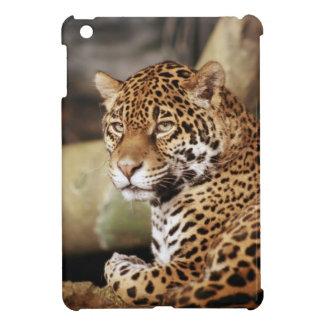 Caso del iPad de Jaguar mini
