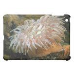 Caso del iPad de la anémona del arrecife de coral