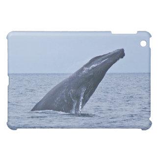 Caso del iPad de la ballena jorobada