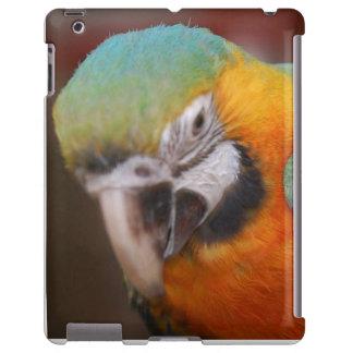 Caso del iPad de la casamata con el loro
