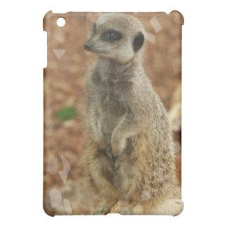 Caso del iPad de la foto de Meerkat