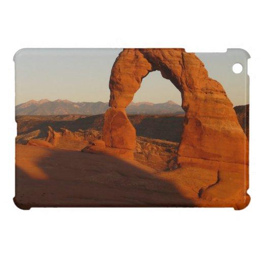 Caso del iPad de la impresión de Moab mini