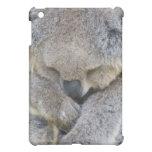 Caso del ipad de la koala