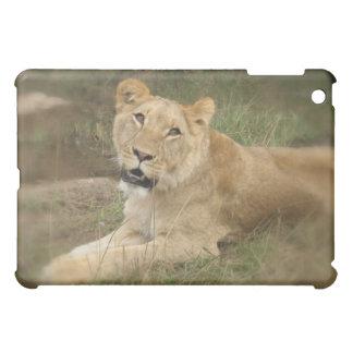 Caso del iPad de la leona