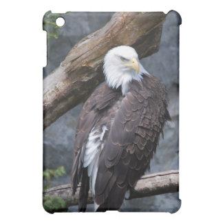 Caso del iPad de la perca de Eagle