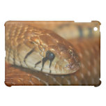 Caso del iPad de la serpiente de Brown