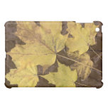 Caso del iPad de las hojas de otoño