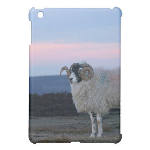 Caso del iPad de las ovejas