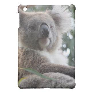 Caso del iPad de los hechos del oso de koala