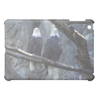 Caso del iPad de los pares de Eagle calvo
