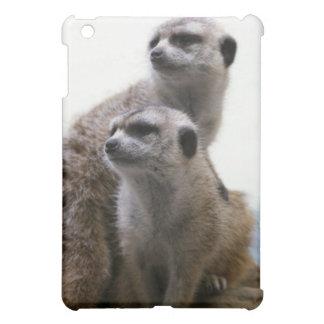 Caso del iPad de los pares de Meerkat