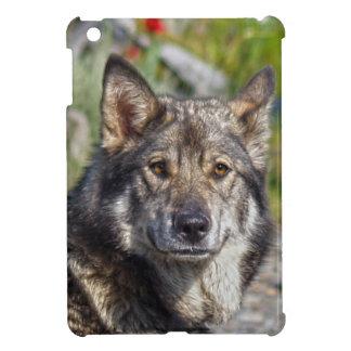 Caso del iPad de los Perro-amantes del pastor