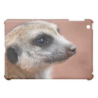 Caso del iPad de Meerkat