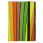 Caso del iPad del arte del arco iris mini con Kick iPad Mini Fundas