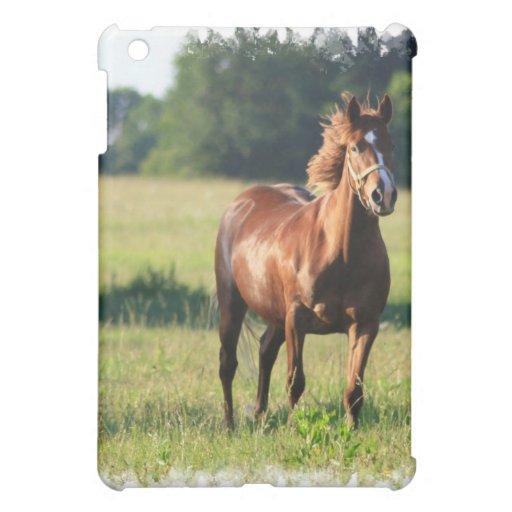 Caso del iPad del caballo de la castaña