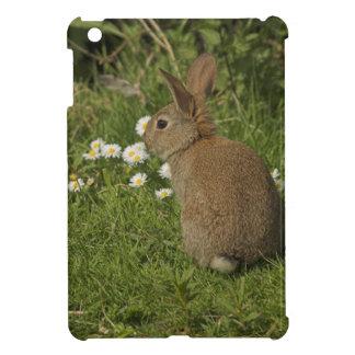 Caso del iPad del conejo mini