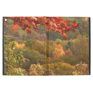 Caso del iPad del extracto del follaje del otoño