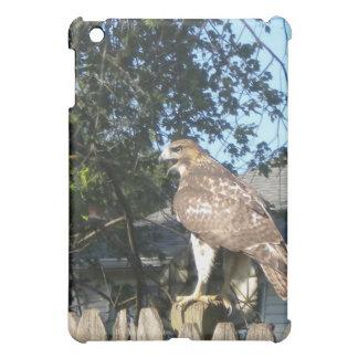 Caso del iPad del halcón