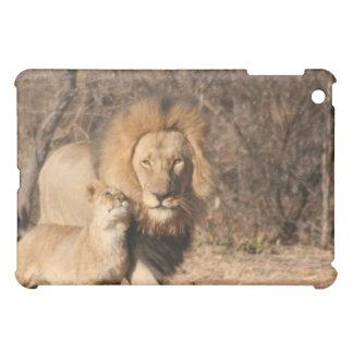 Caso del iPad del león y de Cub