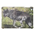Caso del iPad del lobo gris