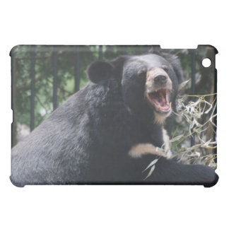 Caso del iPad del oso el gruñir