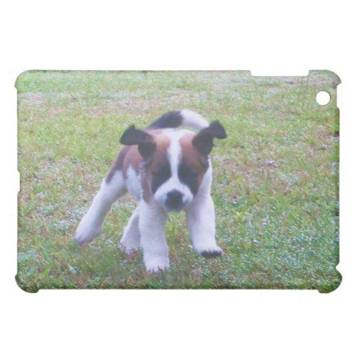Caso del iPad del perrito de St Bernard