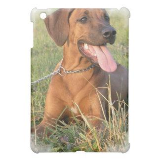 Caso del iPad del perro de Rhodesian Ridgeback