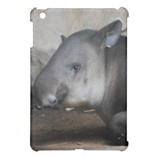 Caso del iPad del Tapir