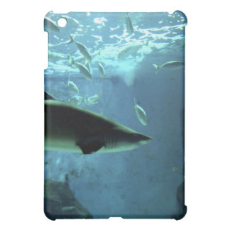 Caso del iPad del tiburón