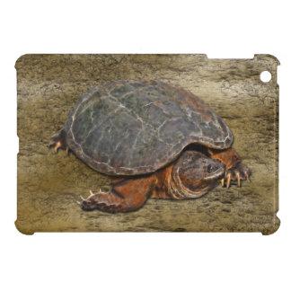 Caso del iPad del Tortuga-amante de la tortuga de