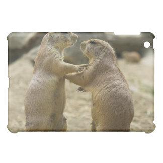 Caso del iPad del trato del perro de las praderas