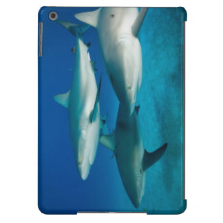 Caso del iPad del trío del tiburón