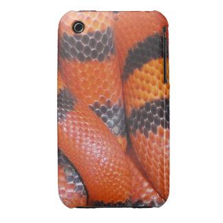 Caso del iPhone 3G/3GS de la serpiente de leche iPhone 3 Case-Mate Cárcasas