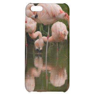Caso del iPhone 4/4S de los flamencos