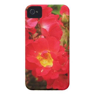 Caso del iPhone 4 4s de los rosas y de las gotas d