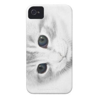 Caso del iPhone 4/4s del gatito de los ojos azules iPhone 4 Case-Mate Coberturas
