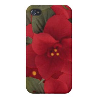 Caso del iPhone 4/4S del navidad del Poinsettia iPhone 4/4S Carcasa