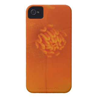 caso del iPhone 4 - amapola de California iPhone 4 Case-Mate Carcasa