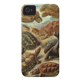 Caso del iPhone 4 de Barely There de la tortuga Funda Para iPhone 4 De Case-Mate