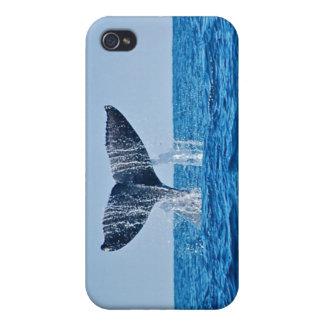 Caso del iPhone 4 de la ballena iPhone 4 Carcasas